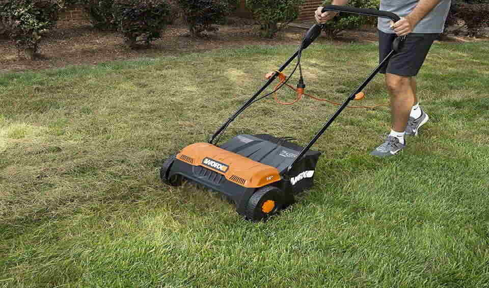 pros and cons of dethatching lawn