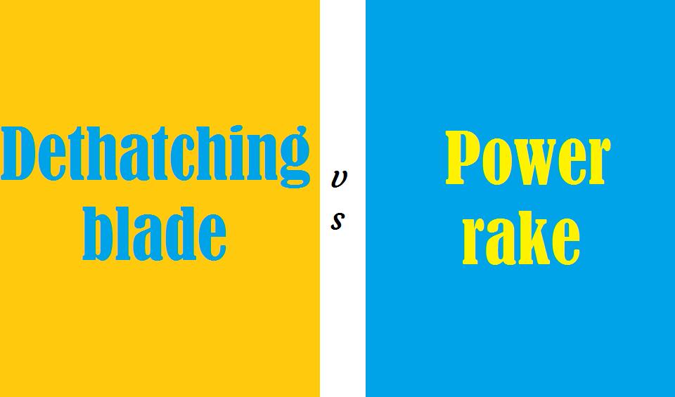 Dethatching blade vs power rake